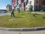 2019_07_11_скос травы