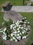 21-07-13 viva flora